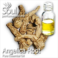 Pure Essential Oil Angelica Root - 50ml