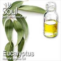Natural Aroma Oil Eucalyptus - 10ml