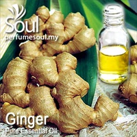 Pure Essential Oil Ginger - 50ml