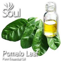 Pure Essential Oil Pomelo Leaf - 10ml